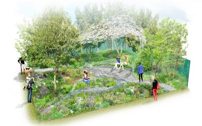 Marketing Manchester announce The Manchester Garden at RHS Chelsea Flower Show